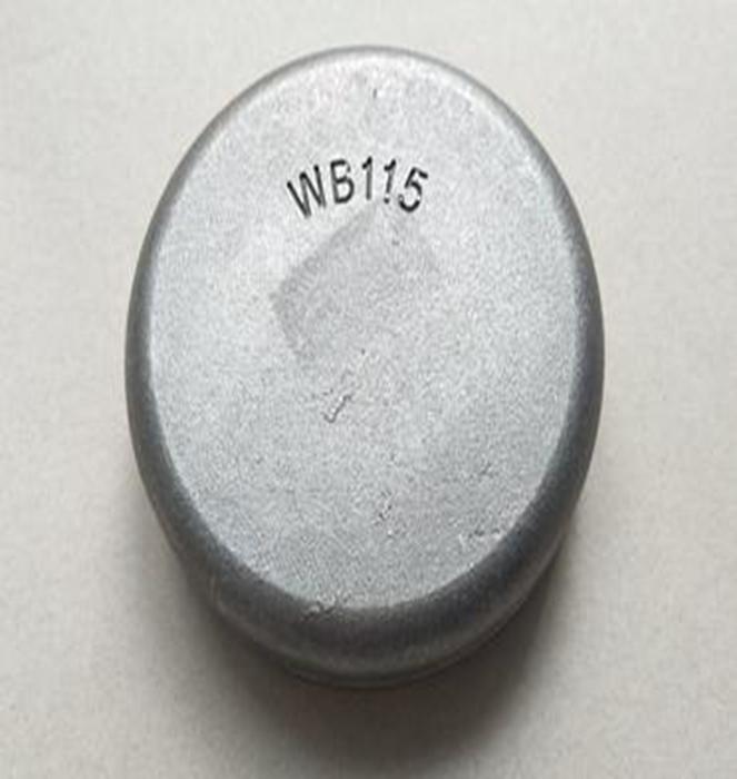 WB115 Wear Button